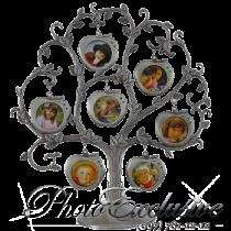 PF9460A Родовое Дерево