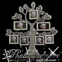 Родовое дерево 9772