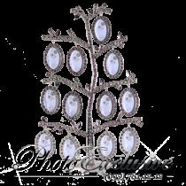 9638 Родовое дерево