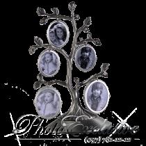 Родовое дерево CKKN50 двухсторонее